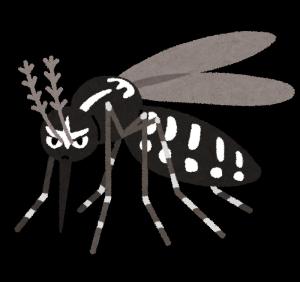 bug_hitosujishima_ka[1]